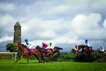 La Touche Cross Country Race, Punchestown