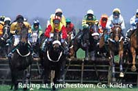 Photo of horse racing at Punchestown, County Kildare